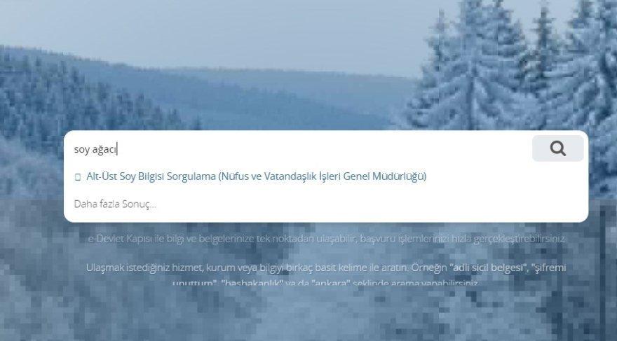 E Devlet Soyağacı Sorgulamaya Günlük Kota Geldi Işte Soy Ağacı