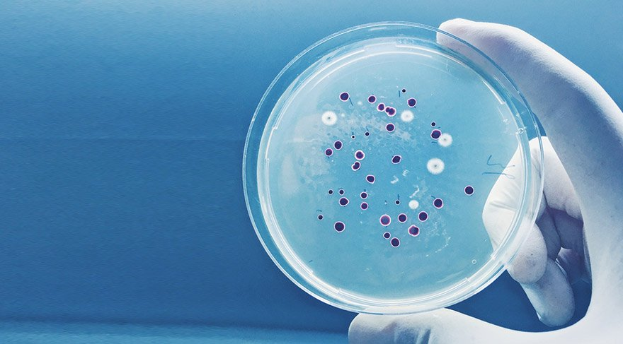Umut veren araştırma: Yeni bir antibiyotik familyası keşfedildi