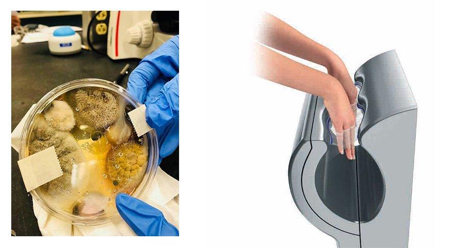 Tuvaletin bütün mikropları elinize bulaşmış olabilir!