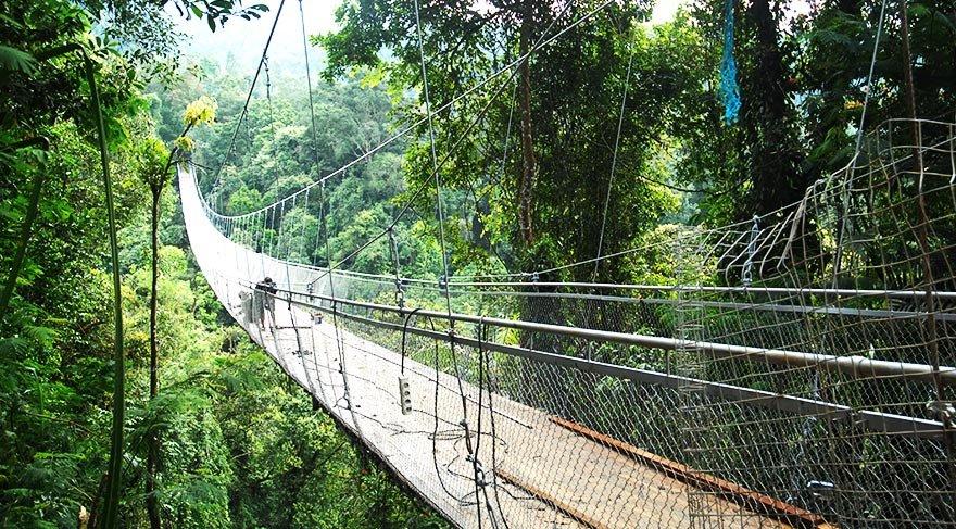 Endonezya'da turistlere özel asma köprü
