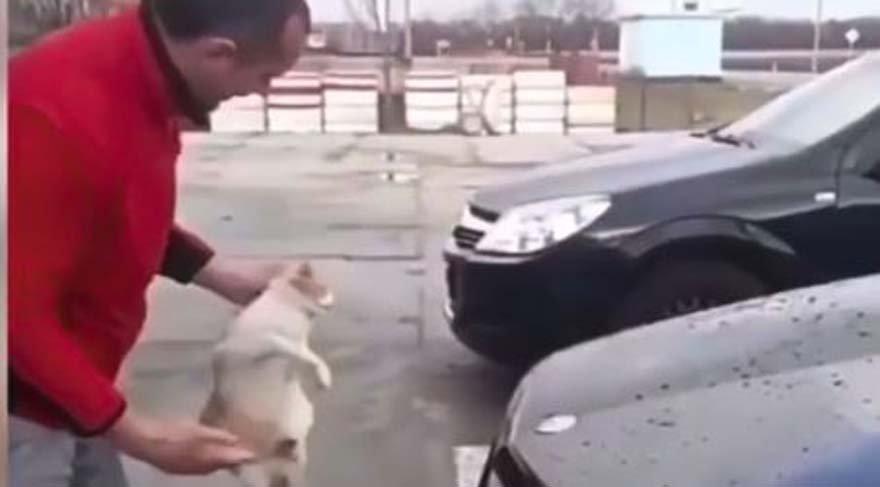 İnsanlıktan nasibini almamış… Soğuk havada aracı kediyle sildi!