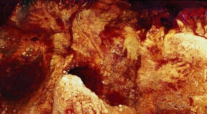 neanderthal1-1