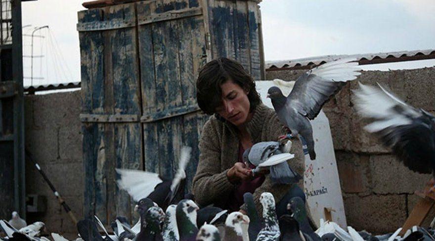 Türkiye'nin Güvercin'i Berlin'e kanat çırpıyor!
