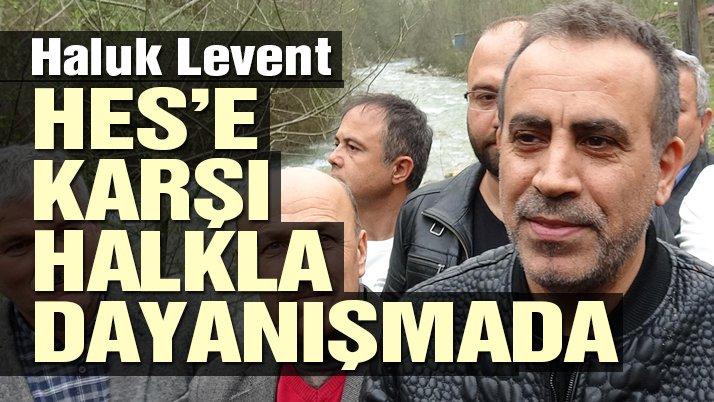 Haluk Levent, Yenice'deki HES'i protesto etti