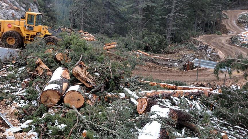 Ormanları peşkeş çekecekler