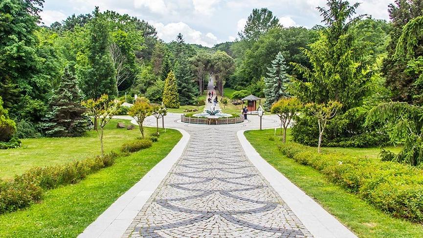İstanbul'un gizli bahçesi: Atatürk Arboretumu
