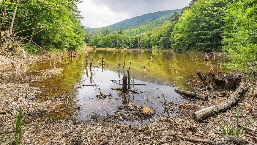 Yalova'nın gezilecek yerleri: Yalova termal kaplıcaları, Çınarcık, Yüreyen Köşk…