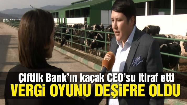 Kaçak CEO Mehmet Aydın itiraf etti! Çiftlik Bank'ın vergi oyunu da deşifre oldu