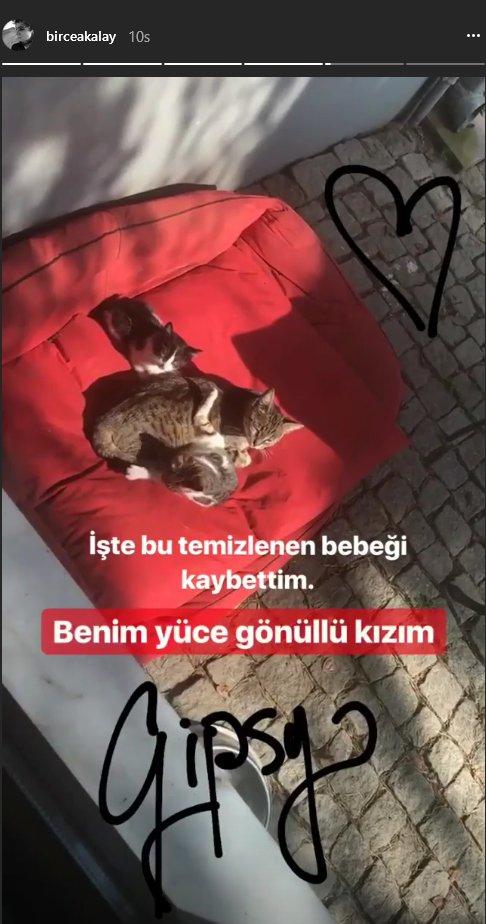 birce-akalay-ic-2