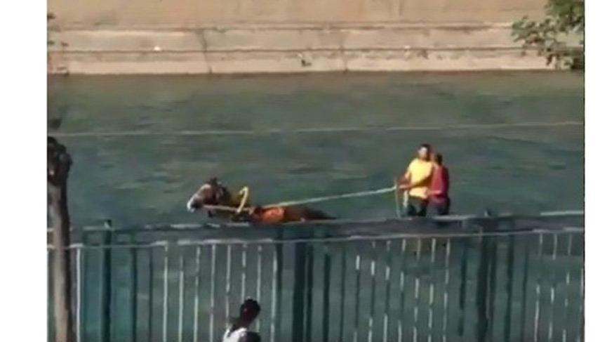 """""""Çılgın Adanalılar at arabası sulama kanalında da yasak"""""""