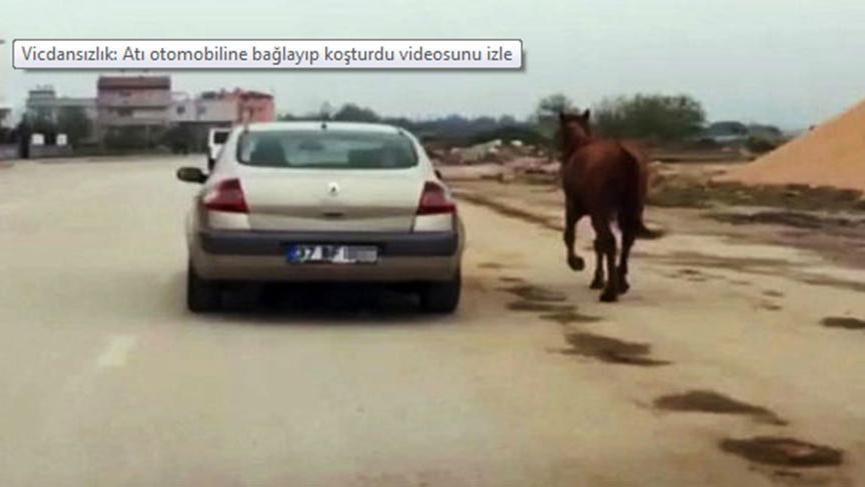 Bursa'da vicdanları sızlatan olay
