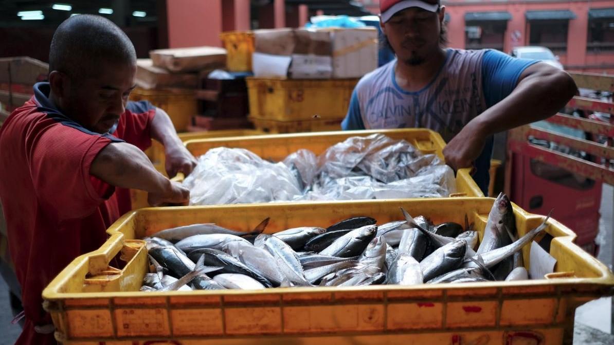 Balık yemek Parkinson hastalığını önlüyor