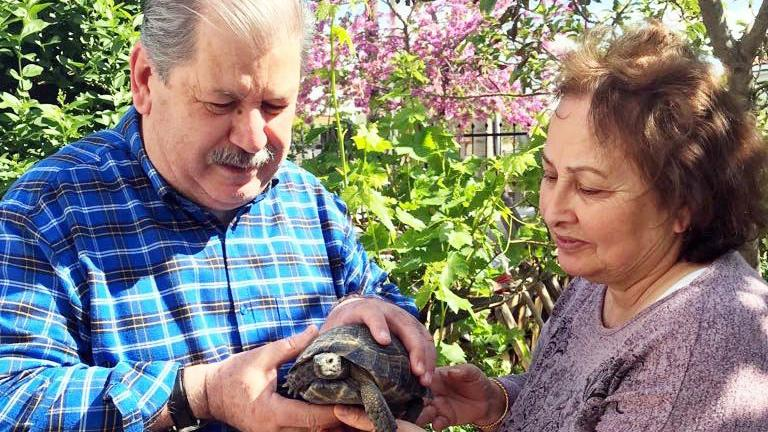 Çöpe atılan kaplumbağayı, sanatçı Numan Pekdemir kurtardı