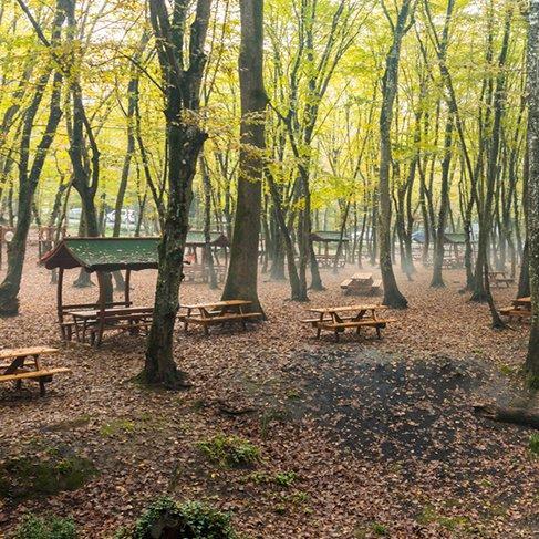 İstanbul'a yakın benzersiz piknik alanları
