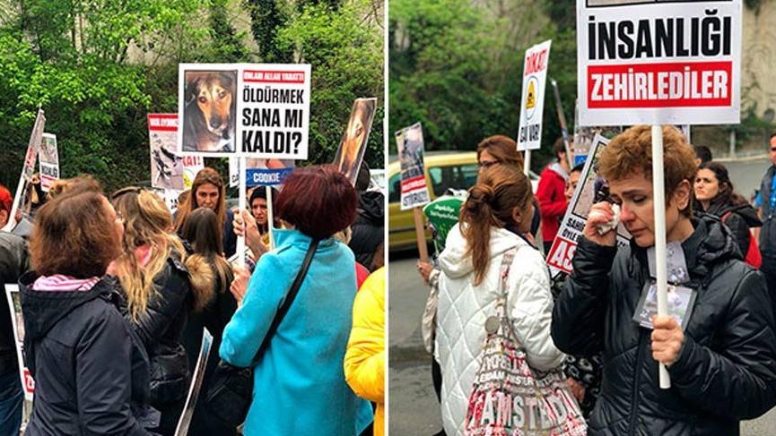 Hayvanseverlerden protesto!