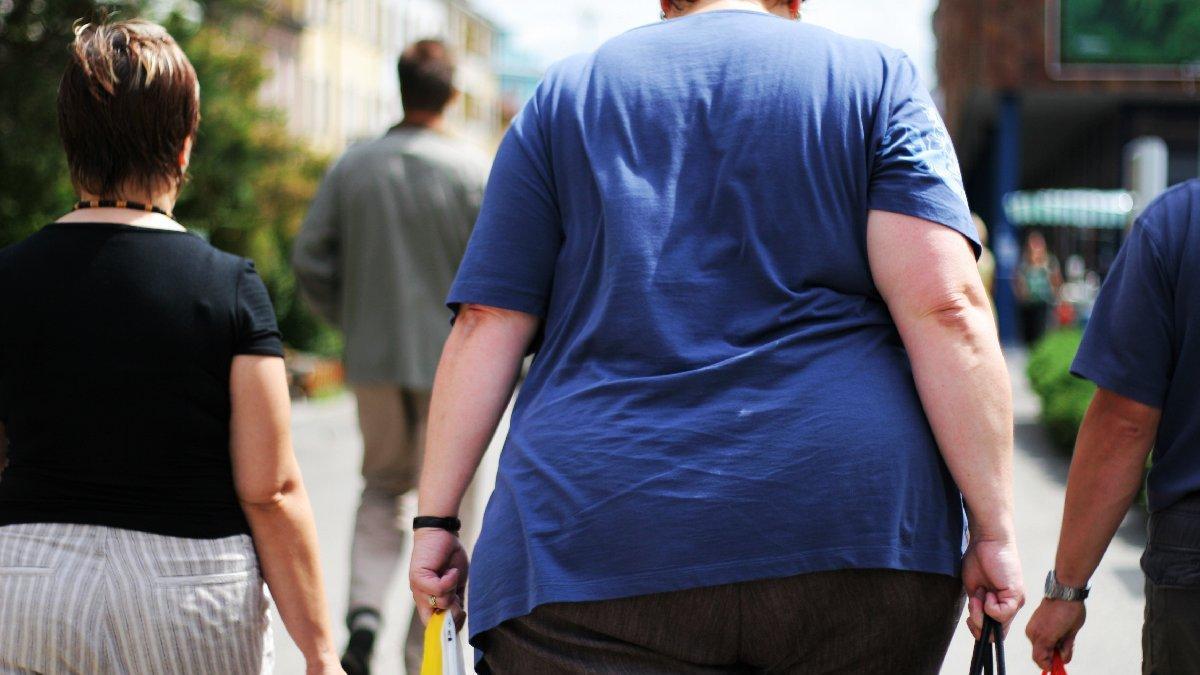 Obezitenin anahtarı onlarda mı: Kahverengi yağlar ve Nrf1 molekülü