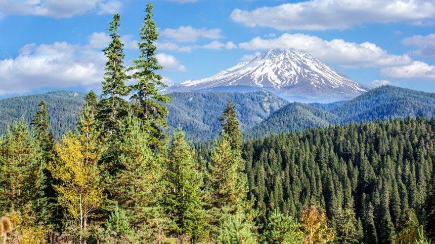 Çankırı gezilecek yerlerin başında tarihi ve ormanlık alanlar geliyor… İşte Çankırı'nın turistik yerleri…