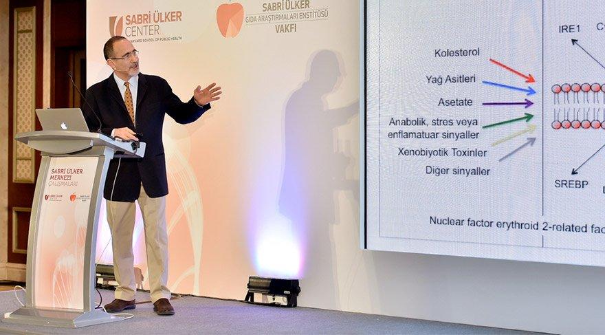 Prof. Dr. Gökhan Hotamışlıgil ve ekibi önemli bir çalışmaya imza attı