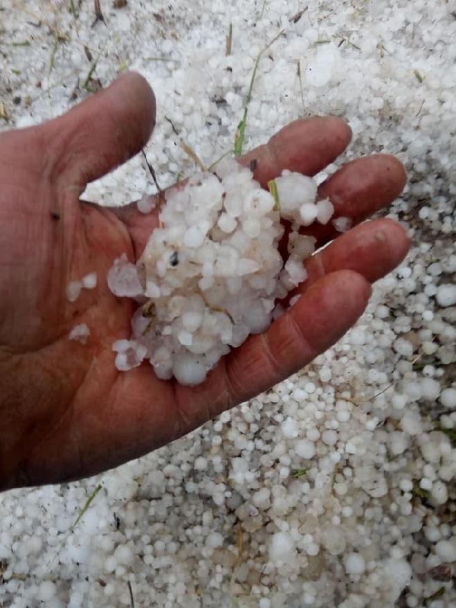Türkiye'nin önemli tarım alanlarından Eskişehir'de geçen günlerde etkili olan yağmur ve dolu sebebiyle hububat ürünlerinden arpa ve buğdayda bu yıl yüzde 20 civarında verim düşüklüğü bekleniyor. Bazı bölgelerde ise hasarın yüzde 70'e ulaştığı belirtildi.