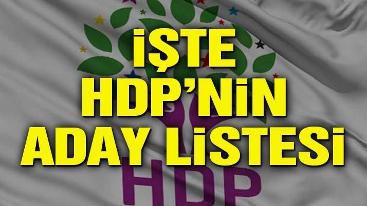 HDP aday listesini YSK'ya verdi