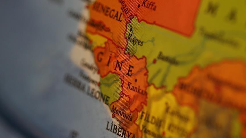 Gine'de başbakan istifa etti