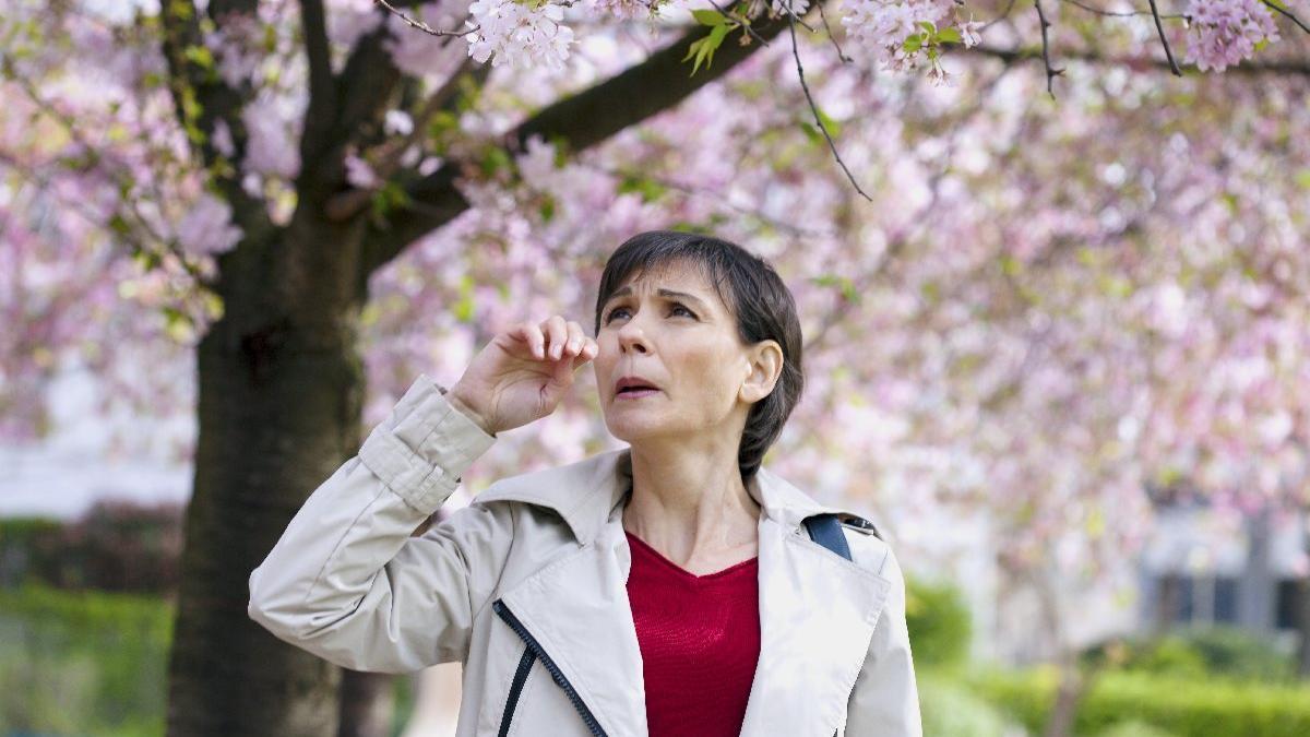 Alerji tedavisinin anahtarı bağırsaklarda