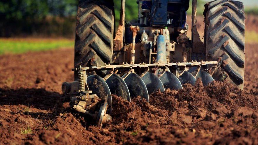 Dünya Çiftçiler Günü nedir? Ne zamandan beri kutlanıyor?