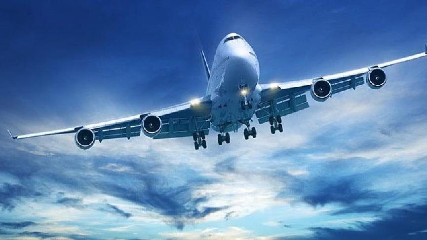 Kadın yolcu uçakta uyuyakaldı, gözünü açınca elini yanındaki adamın cinsel organında buldu!