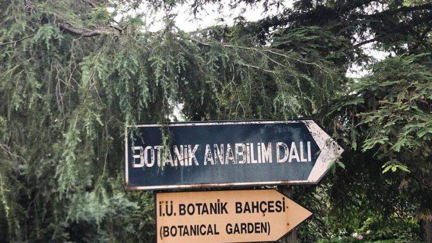 Ata yadigarı botanik bahçeye tahliye şoku!