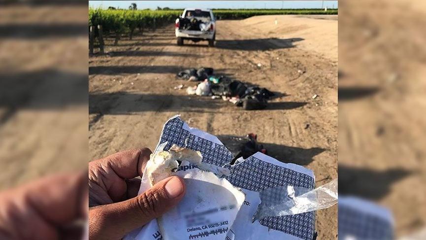 Tarlasının ortasına çöp dökenlerden, çiftçi bakın nasıl intikam aldı?