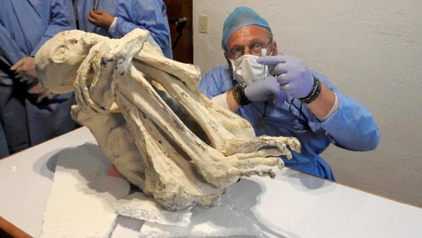 3 parmaklı mumyalanmış ceset bulundu! Yeni bir insan türüne ait olabilir