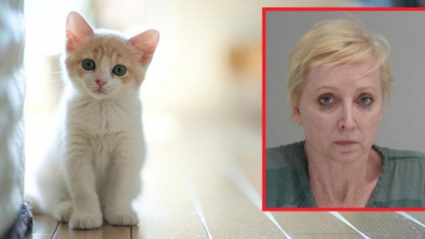 Evin kedisini döven kocasını öldürdü