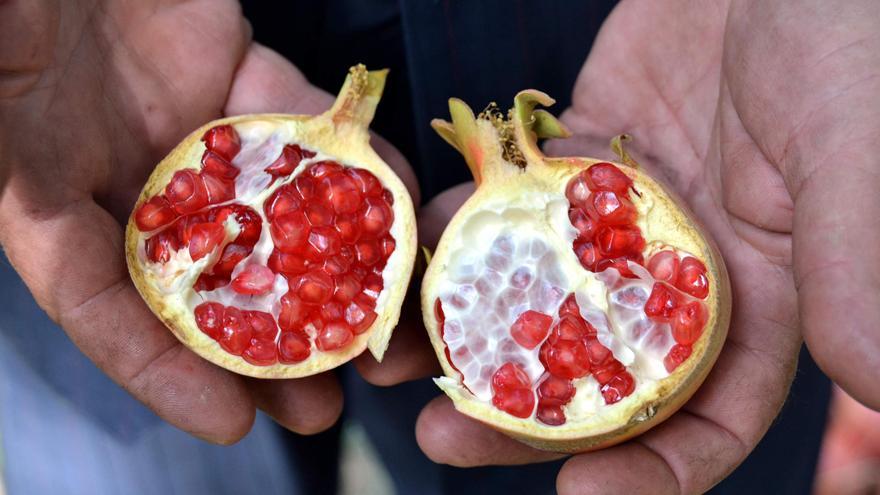Derin dondurucudaki meyveleri tüketmeyin! Yediği donmuş nardan öldü!