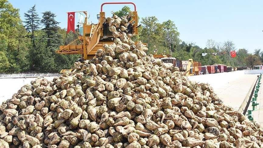 Satılan şeker fabrikalarının sandığa etkisi