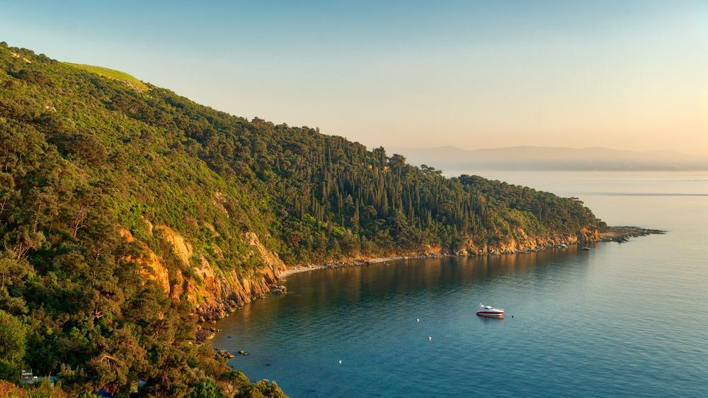 İstanbul'a yakın piknik ve tatil yerleri: İstanbul civarı denize girilecek yerler...