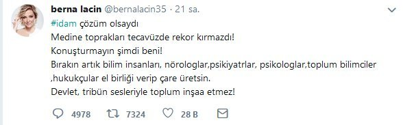 berna-ic-1