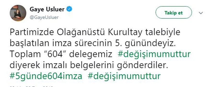 gaye-usluer1