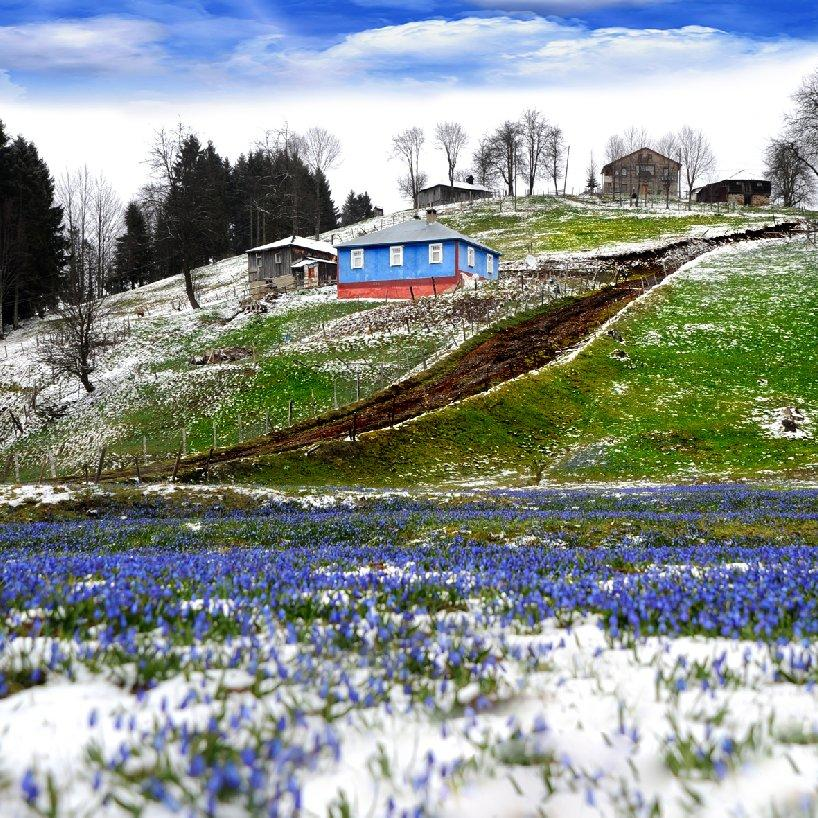 Zengin ormanları ve gölleri ile Trabzon yaylaları