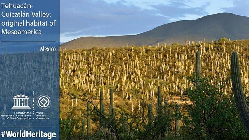 Meksika'nın Tehuacan-Cuicatlan Vadisi Dünya Mirası Listesi'nde