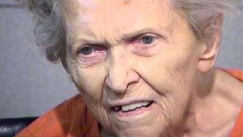 92 yaşındaki kadından akılalmaz cinayet… Sebebi şok etti