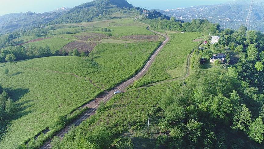Trabzon'da dağın zirvesine OSB kurulacak
