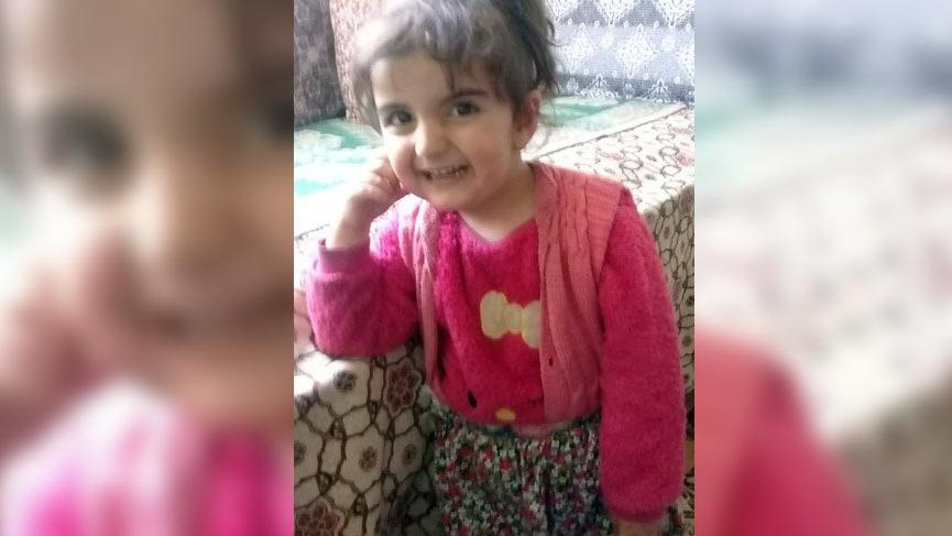 Yaylada kaybolan 3 yaşındaki Evrim için ekipler seferber oldu