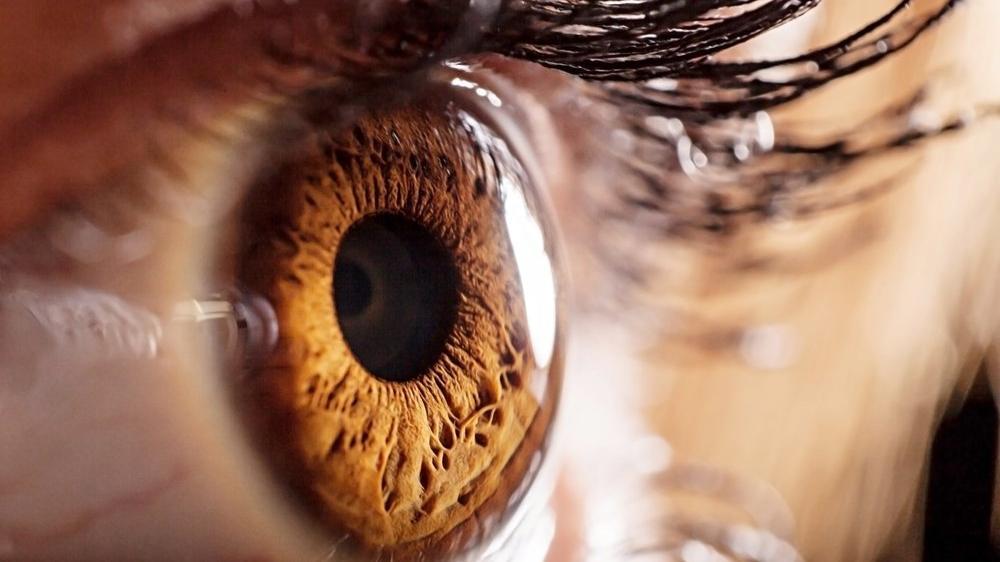 Göz sağlığını koruyan 4 vitamin