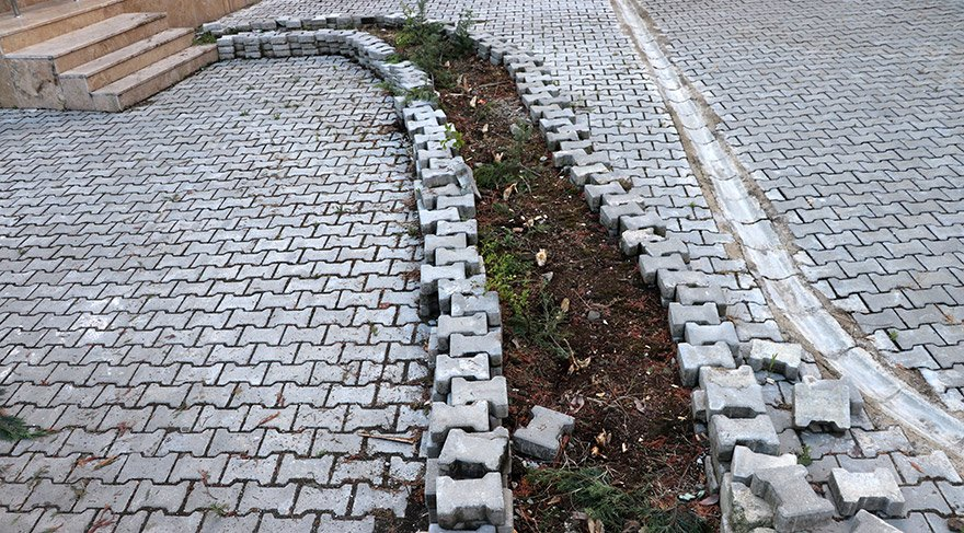 Sakarya'nın Serdivan ilçesindeki Buhara Zaim Güllü Camisi bahçesindeki 31 çam ağacı, 4 kişi tarafından kesilerek çalındı.