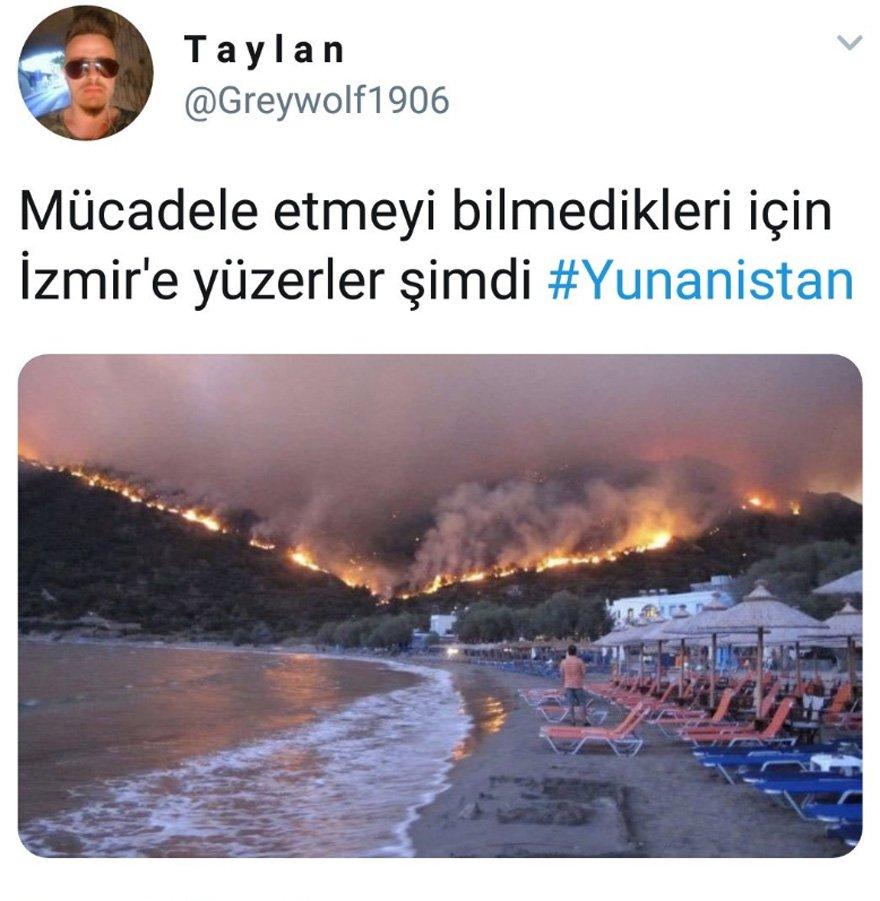 tepki-2