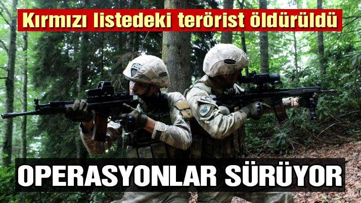 Gümüşhane'de kırmızı listedeki terörist öldürüldü