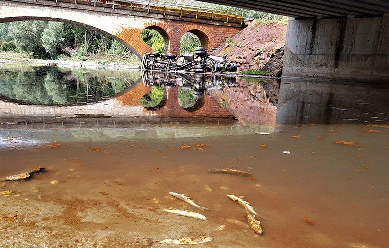 Tankerin devrildiği alanda balık ölümleri yaşanmıştı. Foto: İHA