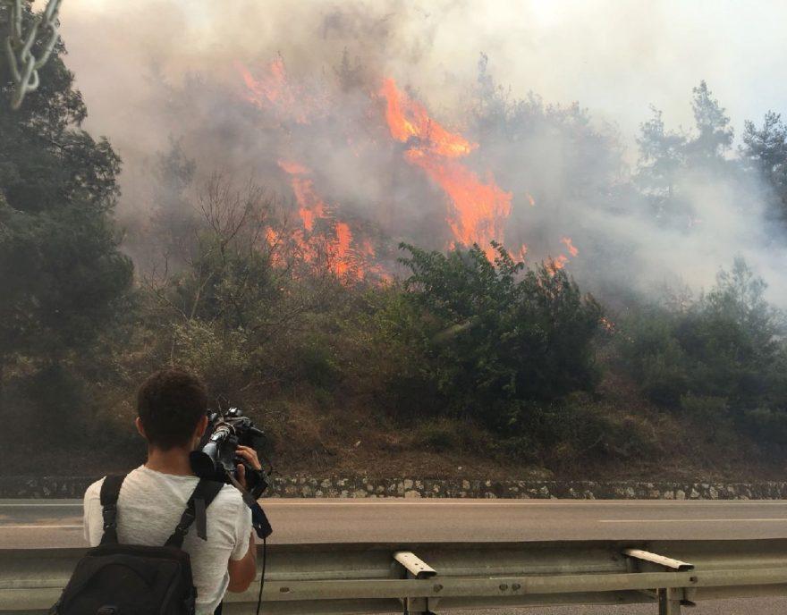 Bursa'daki yangın karayolu kenarına kadar indi. İHA