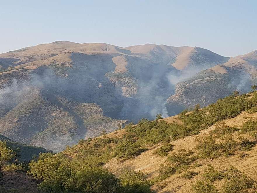 Tunceli'de günlerdir devam eden yangın Foto: DHA