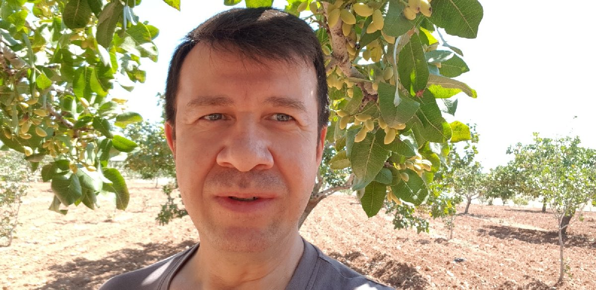 Tüccar Mehmet Pamuk